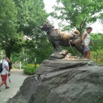 The statute of Balto in Central Park....now gaining luster with being pet by all of the children who visit him.