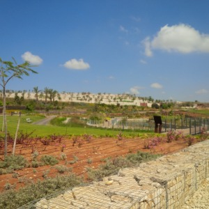View of the newly created visitor's center and landscaping at the Ariel Sharon Park.